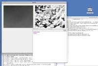 3_oktascreen.jpg